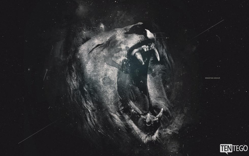 Artykuł o lwach